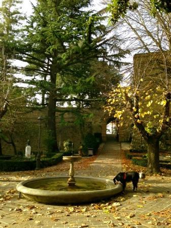 Rocca Borgesca: The fountain and entrance through the original gate-house