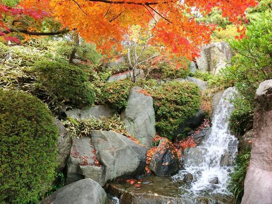 Mejiro Garden: 小さな川もあります。