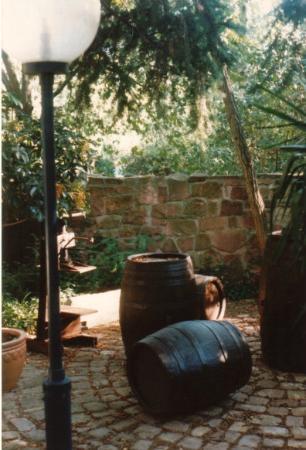 Hotel L'Auberge: Garten