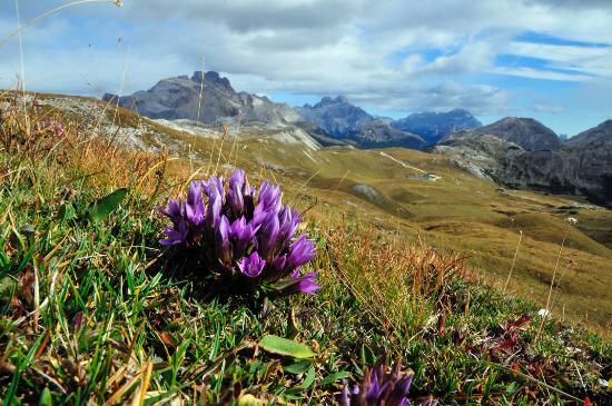 Garni Erna Mountain B&B: Magnificent scenery