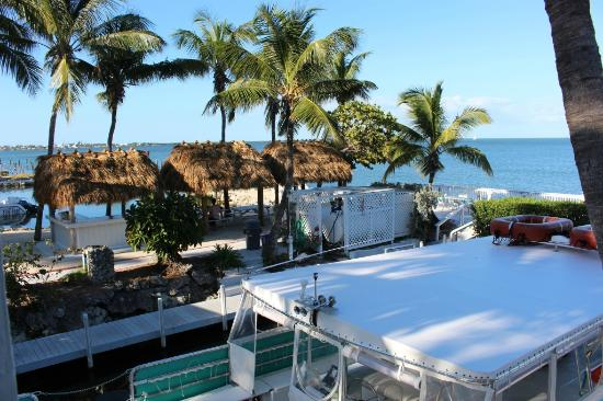 Amy Slate's Amoray Dive Resort: Gorgeous View!