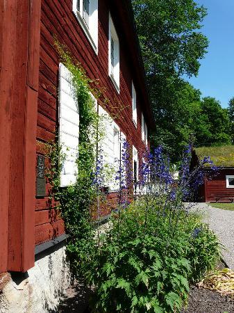 Linnés Hammarby: Linnaeus Hammarby