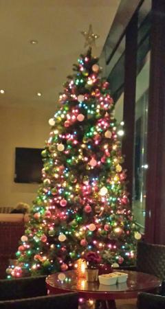 Elan Hotel Christmas Tree