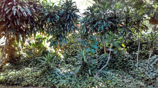 4 - Courtyard By Marriott Cancun Airport Resmi - Tripadvisor