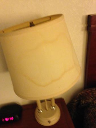 Econo Lodge: Bedside Lamp