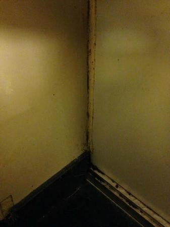 Econo Lodge: Mold along the walls