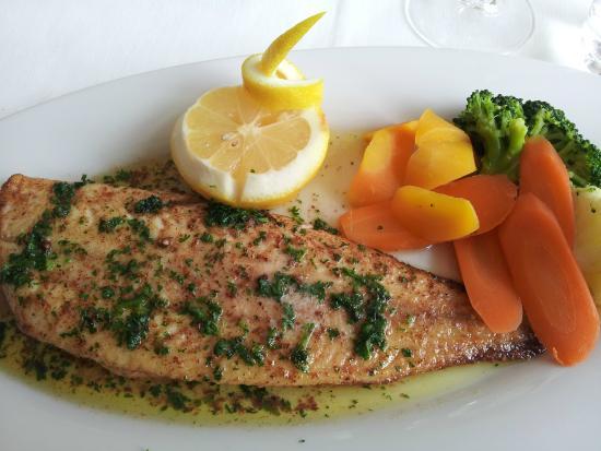 Caffe Vivo : Fish filet nicely prepared