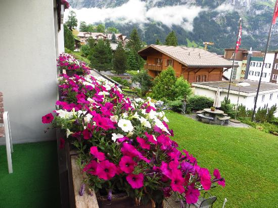 Hotel Restaurant Alpina Grindelwald : View from the Balcony