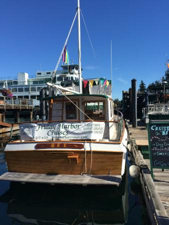 Friday Harbor Cruises