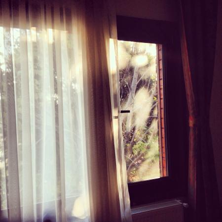 Ercan Inn: Окошко нашего номера