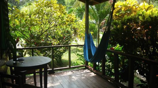 Hotel Nirvana by the Sea: Hängematte vor der Cabina