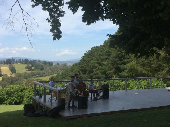 Seville Hill Winery: Beautiful setting and greater entertainment