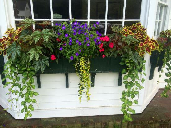 Grafton, VT: Summer Window Box