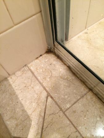 The Novotel Vines Resort Swan Valley : mould around shower