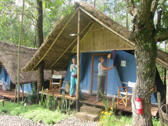 Eco-Omo Lodge: Our fabulous home for 3 days