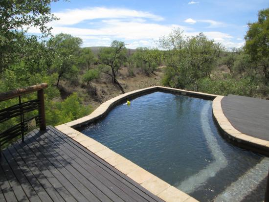 Thakadu River Camp: Main pool