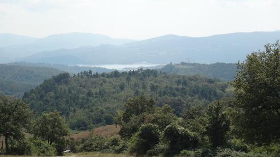 Agriturismo Corzano : A walk into the hills behind
