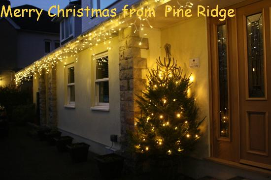 Pine Ridge: The Lights are on