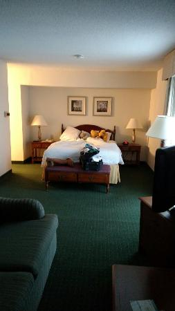 Hawthorn Suites By Wyndham Fishkill/Poughkeepsie Area: Nice sized room
