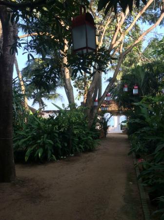 Fort House: Garden