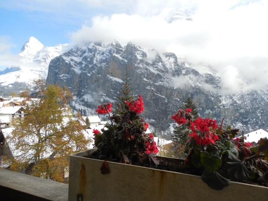 Hotel Alpenruh: View from the balcony after the snow.