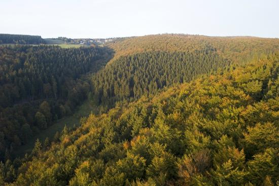 Landschafts-Gasthaus Bräutigam Hanses: Fernblick