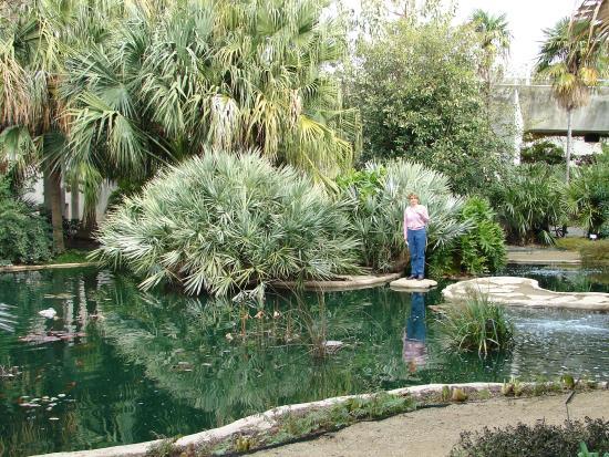 San Antonio Botanical Garden: Jardín Botánico En San Antonio