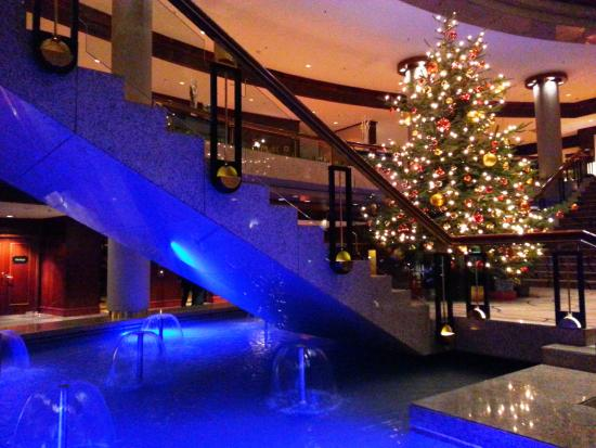 Hyatt regency Cologne - beautiful Xmas tree at Hotel Lobby - Picture ...