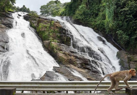 Athirappilly, Ấn Độ: Charpa waterfalls