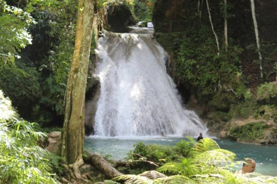 Jamaica Exquisite - Day Tours : Cascading waterfall - so inviting! - at Blue Hole Falls Ocho Rios