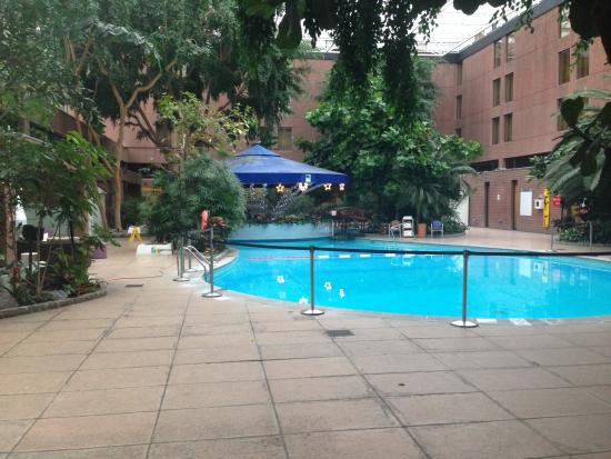 Swimming pool picture of sheraton skyline hotel london - Hotel in london with swimming pool ...