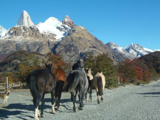 Campo Antilco : cavalgada