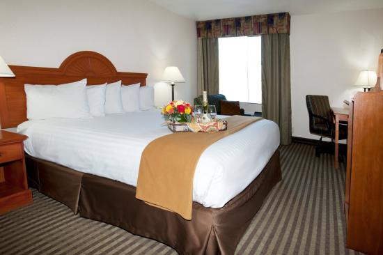 Best Western Plus Twin View Inn & Suites: King Guest Room
