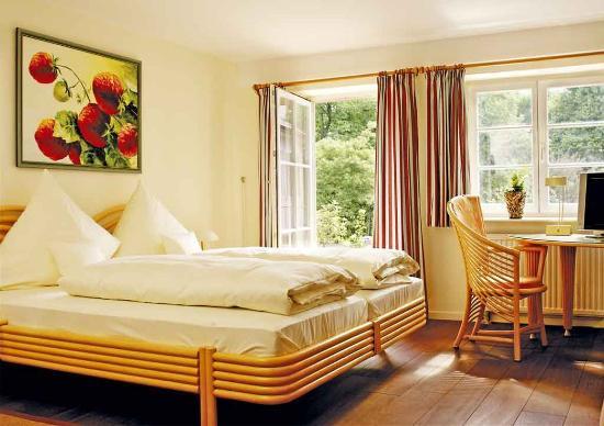 Das Lamm Heidelberg : Guest room Das Lamm