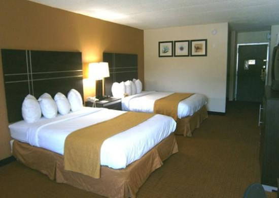 Quality Inn & Conference Center: guest room