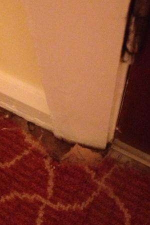 Thornton Hall Hotel & Spa: Our disgusting 'luxury' room at Thornton Hall Hotel