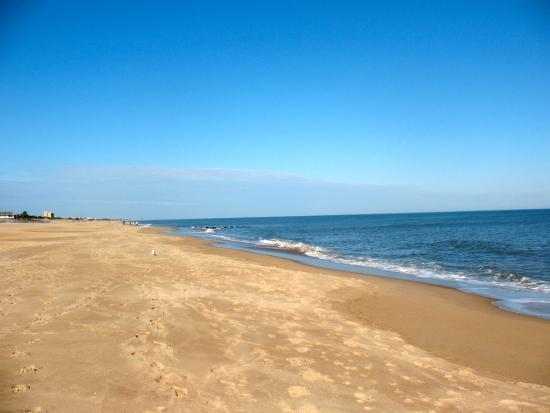 Designated Surf Areas Virginia Beach