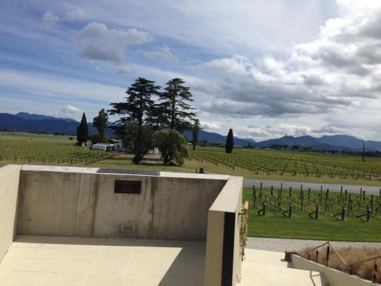Wither Hills Cellar Door and Restaurant: View from the winery