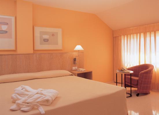 Hotel Jardines del Turia: Standard Room