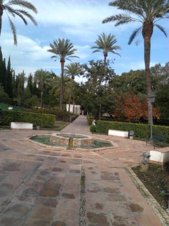 Jardin Botanico de Cordoba: Просто вид в саду