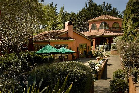 Sonoma Coast Villa & Spa : Patio