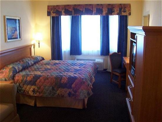 Gateway Inn and Suites Hotel : Guest Room