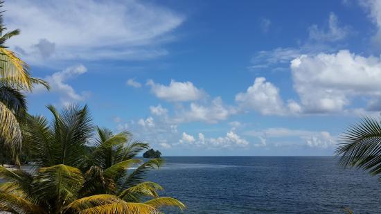 أوشنز ساليبيا نيتشر ريزورت: ocean view