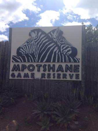 Mpotshane Safaris