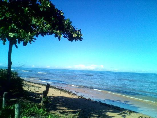 Praia de Manguinhos: manguinhos
