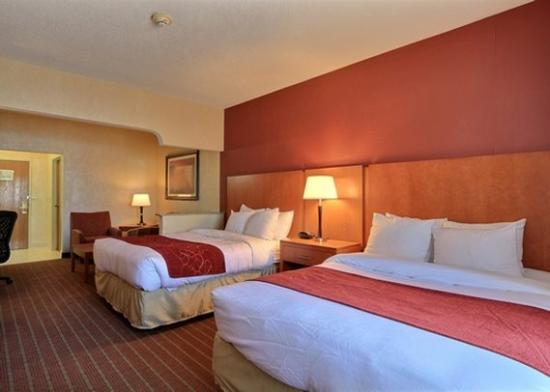 Comfort Suites Auburn Hills: MIStandard Two Queen Suite View
