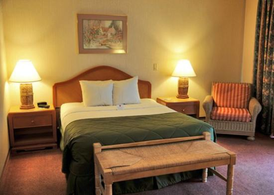 FairBridge Inn, Suites and Conference Center: Queen Bed