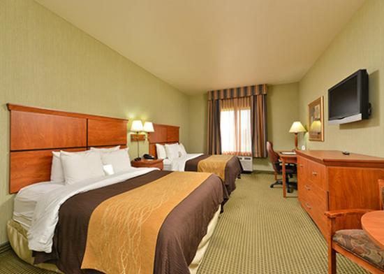 Comfort Inn & Suites: Guest Room 11