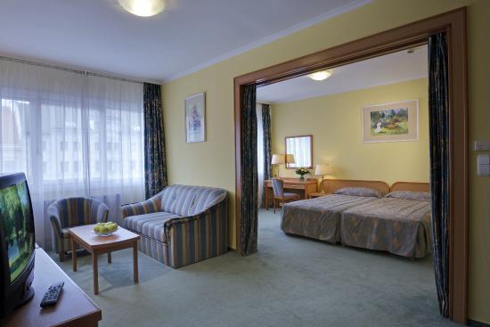 Hotel Raba