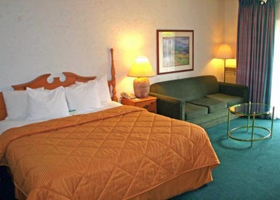 Inn at Oxnard : King suite